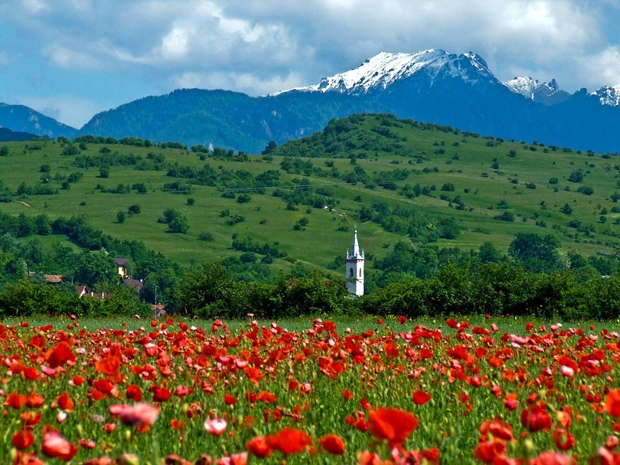 Romania23