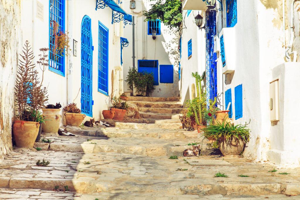 Тунис Сиди Бу Саид