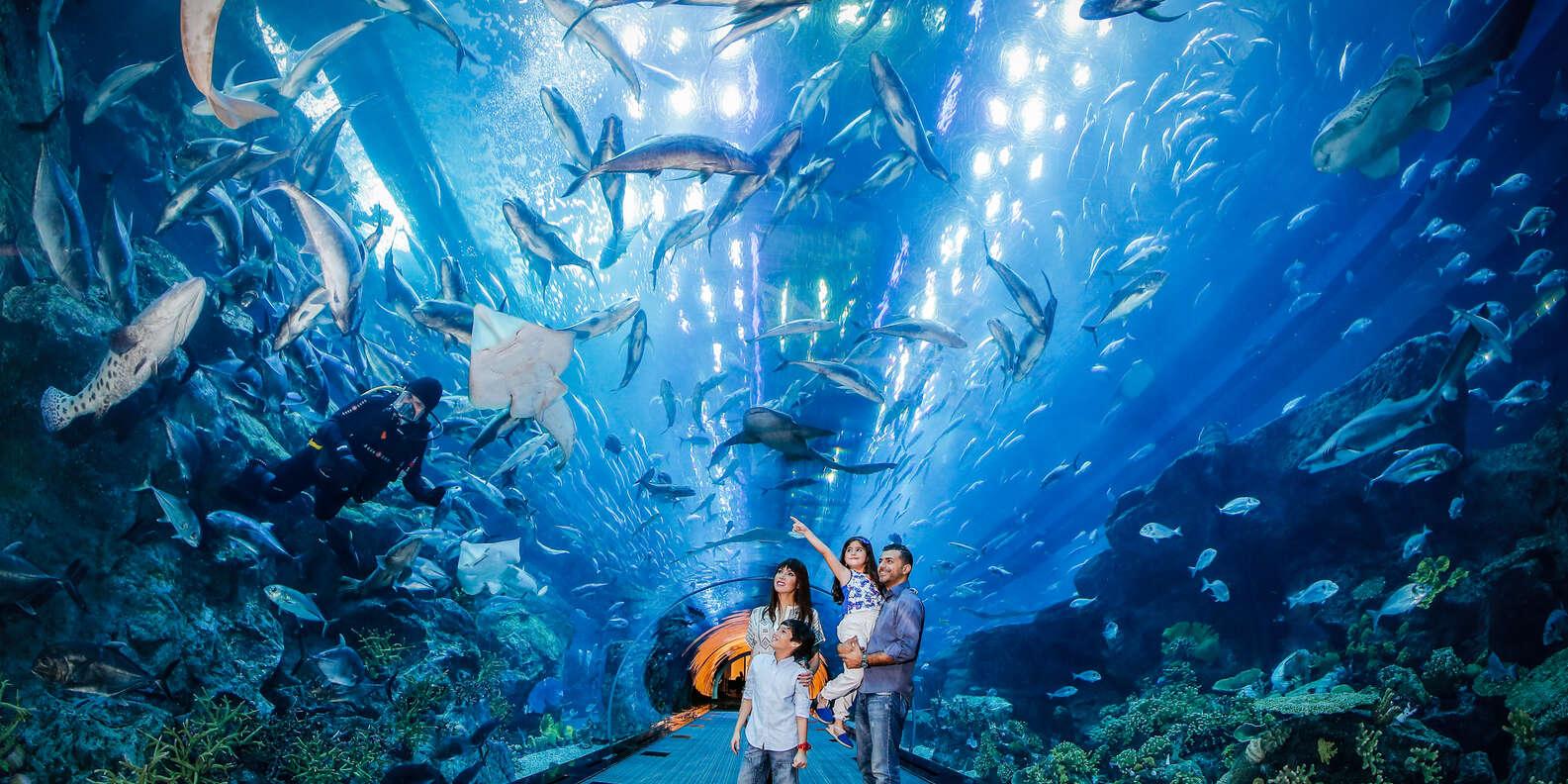 Дубай океанариум