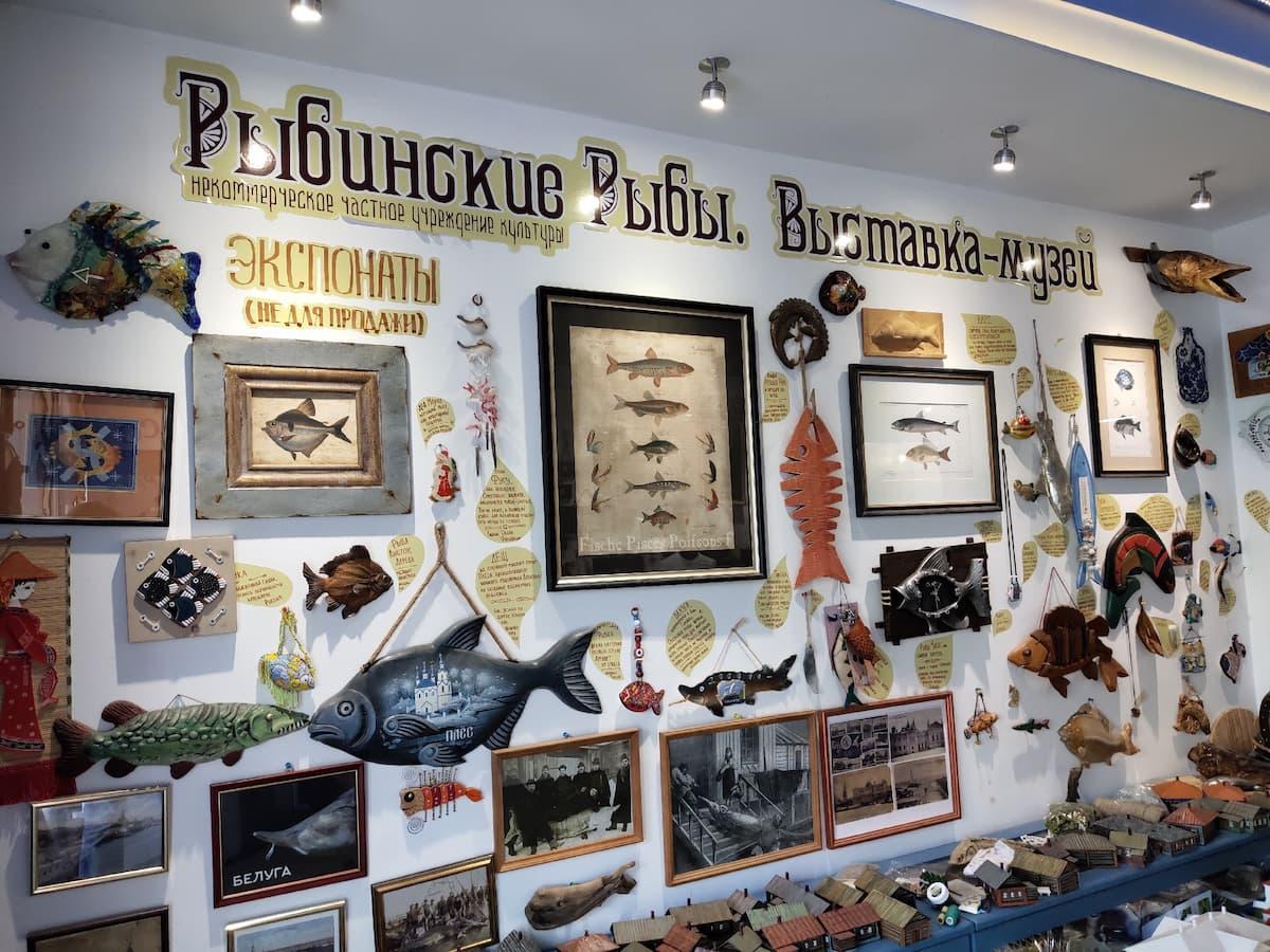 Музей «Рыбинские Рыбы»