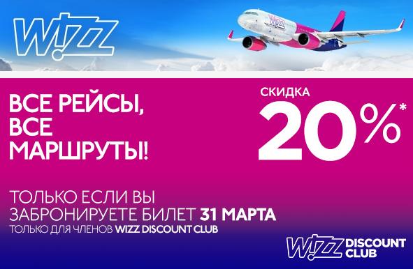 wizz3103
