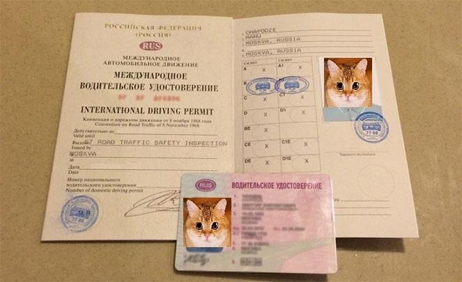 аренда авто водительское удостоверение